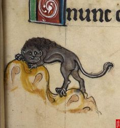 """Detail from """"The Rutland Psalter"""", medieval British Library Add MS f Medieval Drawings, Medieval Art, Ugly Cat, Dragons, Old Best Friends, Cowardly Lion, Early Middle Ages, Medieval Manuscript, Dark Ages"""