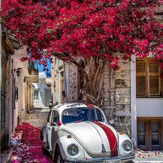 Amorgos island, Greece ... 22nd of June.. World wide day of the VW BEETLE ❤❤❤ . . . #kings_villages#ig_europa#besteuropephotos#vacations#travelchannel#natgeo#living_europe#vip_world_photo#cnntravel#bbc_travel#guardian#streets_and_transports#infinity_hdr#hdr_addiction#igworldclub_hdri#kings_hdr#balkan_hdr#expression_greece#nature_greece#cyclades_islands#alltags_gr#beetle#worldbeetleday#vw_beetles#beetles#kings_transports#transports#ig_germany