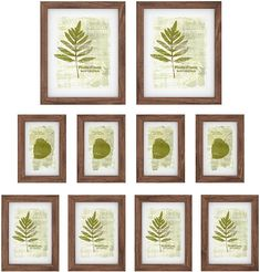 Multi Picture Frames, Four 4, Clear Glass, Collage Photo, 6 Inches, Kitchen Dining, Projects, Amazon, Brown