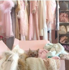 Discovered by Find images and videos about pink, clothes and girly on We Heart It - the app to get lost in what you love. Princess Aesthetic, Pink Aesthetic, Gabriella Demartino, Zack E Cody, Just Girly Things, Girly Stuff, Pink Stuff, Everything Pink, Girls Life