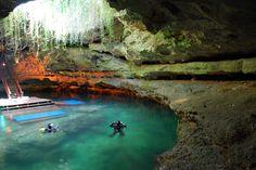 Dive Devil's Den & Blue Grotto, Williston, Florida - Bucket List Dream from TripBucket Florida Travel, Travel Usa, Florida Trips, Florida Usa, Williston Florida, Places To Travel, Places To See, Florida Springs, Florida Adventures