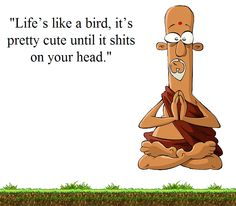 Life's like a bird... click to read more from His Irreverence.