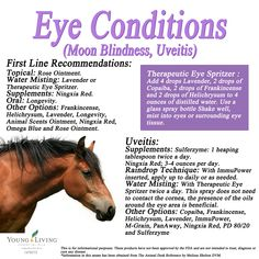 Young Living Essential Oils Equine or Horse Eye Conditions. Moon Blindness and Uveitis. www.facebook.com/YoungLivinghasanoilforthat