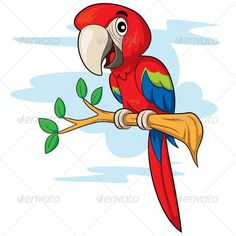 Parrot Cartoon  #graphicriver