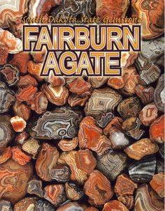 Event : Fairburn Agate presentation by Roger Clark South Dakota Travel, South Dakota State, Fairburn Agate, Fossil Hunting, Rock Hunting, Gem Shop, Glass Gemstone, Cool Rocks, Rocks And Minerals