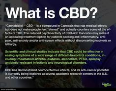 In my experience, CBD is infinitely more effectively as an abortive treatment than triptans or narcotics
