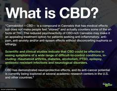What is CBD?|From http://www.medicaljane.com/