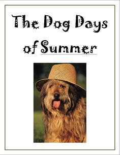 Visit the first floor of our library and browse our display of books featuring dogs!