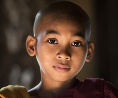 Маленький Будда Автор Виктория Роготнева