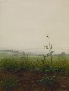 Landscape with Bird and Weeds