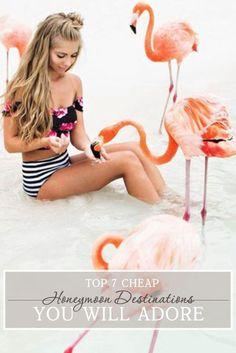 Flamingos in Aruba. JessaKaeFlamingos in Aruba. Cheap Honeymoon Destinations, Honeymoon Ideas, Romantic Honeymoon, Summer Fun, Summer Time, Summer Days, Summer Beach, Albion Fit, Aquaman