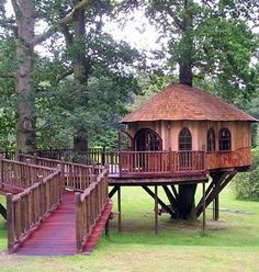 Beautiful tree house with a #wheelchair entrance ~ love it! #accessibility