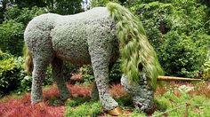 living plant sculptures | garden5.jpg