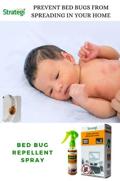 Herbal Strategi Bed Bug Spray: Get rid of bed bugs (Khatmal Marne Ki Dawa) without the use of chemicals. Household Cleaning Tips, Cleaning Hacks, Bed Bug Spray, Bed Bug Control, Rid Of Bed Bugs, Bed Bugs Treatment, Bed Bug Bites, Spray Can, Cool Beds