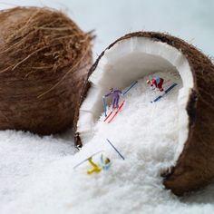 Miniature life. Coconut snow skiers