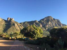 Barbara Freund startet in den Kirstenbosch Gardens zum Gipfelsturm des Tafelbergs in Südafrika. Bericht auf www.travellers-insight.com. #Fernwehblog