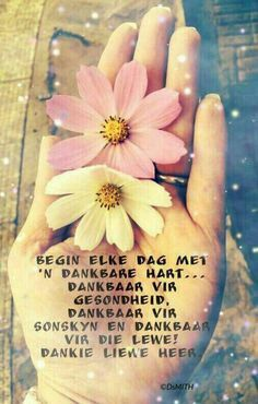 Good Morning Good Night, Good Morning Wishes, Greetings For The Day, Sleep Quotes, Goeie More, Inspirational Qoutes, Motivational, Afrikaans Quotes, Bible Prayers