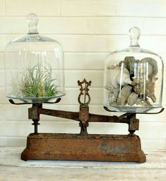 Vintage Scale with Cloche Cover Displays...