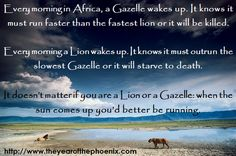 Lion or Gazelle, it doesn't matter. Just. Keep. Running.