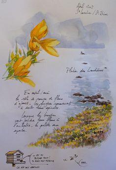 Une Bretagne par les contours/St-Lunaire