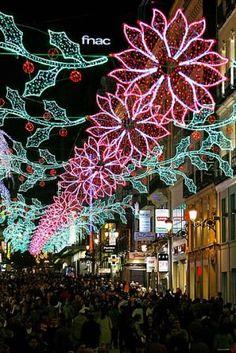 Gorgeous Pointsettia Lights in Madrid, Spain <3 <3 <3