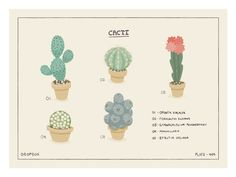 Cacti; by Ryan Putnam Music Garden, Garden Art, Flat Illustration, Floral Illustrations, Cactus, Cacti And Succulents, Textures Patterns, How To Draw Hands, Perfectly Imperfect