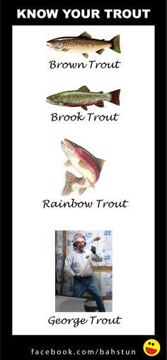 Dat my Rainbow on dat poster! ArtisTeriReneeBlehm