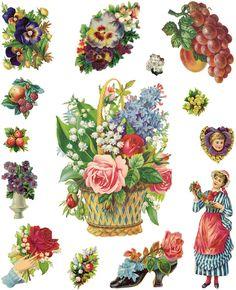 Dover Publications flower n fruit