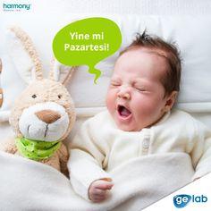 Pazartesi sendromunu atlatmış olmanızı diliyoruz :) Mutlu haftalar!  O Doğmadan Bilmelisin! ► http://www.gelab.com.tr/harmony-test/hamilelerde-yeni-nesil-tarama-testi