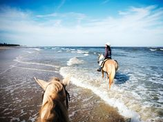 Eimear Lynch reports on the best hotels, restaurants, and activities in Amelia Island, Florida, including the Kelly Seahorse Ranch, Fort Clinch State Park, and Elizabeth Pointe Lodge.