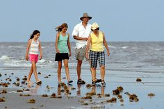 """About The Galveston Island State Park was named one of the top 5 """"Best Gulf Coast Beaches"""" by Travel Channel in The park offers a quiet oasis on the island's West End where visitors can explore the Gulf of Mexico or Galveston Bay. Texas Vacations, Unique Vacations, Galveston Texas, Galveston Island, Texas Parks, State Parks, Houston Date Ideas, Bird Watching, Staycation"""