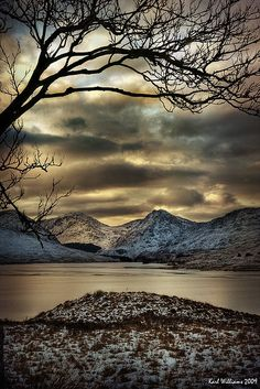 collettealyson:   Scotland of the day 12.7.12 — Arklet Branches by Karl Williams. Loch Arklet, Trossachs, Scotland.