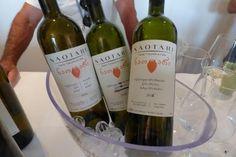 Internationales Wein-Projekt gekrönt mit ungebrochenem Interesse