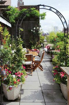 Rooftop garden in New York City • photo: Norman McGrath on Inhabitat