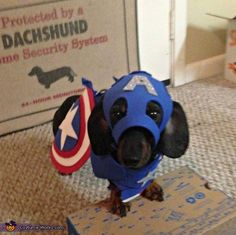 Captain America - Halloween Costume Contest via @costume_works