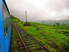 The pretty blue train to Ella.