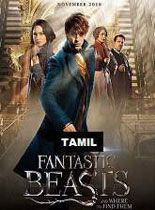 Fantastic Beasts and Where to Find Them Tamil Dubbed Movie, Fantastic Beasts and Where to Find Them Full Movie Online 2016 DDVRip