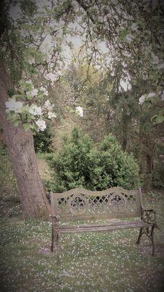 Idyllisches Plätzchen unterm Apfelbaum