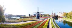 huis ten bosch japan - ค้นหาด้วย Google Fair Grounds, Japan, Google, Fun, Travel, Viajes, Traveling, Tourism, Lol