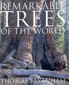 Remarkable Trees of the World by Thomas Pakenham http://www.amazon.com/dp/0393049116/ref=cm_sw_r_pi_dp_8QEdvb09NFR10