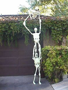 Cheap plastic skeletons climbing the house. Haha