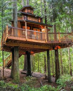 Have you met my my friend @wildtreewoodworks? He makes awesome treehouses like this one. One of the early treehouses I posted about on @treehouseclub_ that I still can't get enough of. @claritynorthwest #treehouseclub