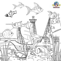 98 Best Under the Sea Coloring or Painting Pages images