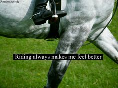Equestrian Quotes and Sayings | Horse Rider Problems | jerisann riding always makes me feel better