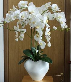 home decorating and staging interiors with flowering plants