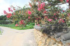 강원도 고성군 왕곡마을, Korea 2014.09.10