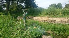Amazing gardens and sculptures