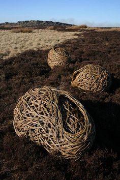 Laura Ellen Bacon. I have fallen in love with this random weave sculpture stuff!