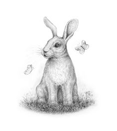 Rabbit drawing step by how to draw tutorials harpy eagle cartoon steps cartoons free bunny for beginners Cartoon Drawing Tutorial, Cartoon Girl Drawing, Cartoon Drawings, Easy Drawings, Animal Drawings, Drawing Animals, Drawing Tutorials, Art Tutorials, Pencil Drawings