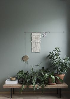 plants on bench against green wall Green Indoor plants Tropical Boho Bohemian Relax Nature Hippy Bold Paint Styling Interior Design Home Botanical house home style love nature natural tropics tropical plant lounge living Home Interior, Interior And Exterior, Interior Styling, Natural Interior, Gray Interior, Room Inspiration, Interior Inspiration, Tuesday Inspiration, Interior Minimalista